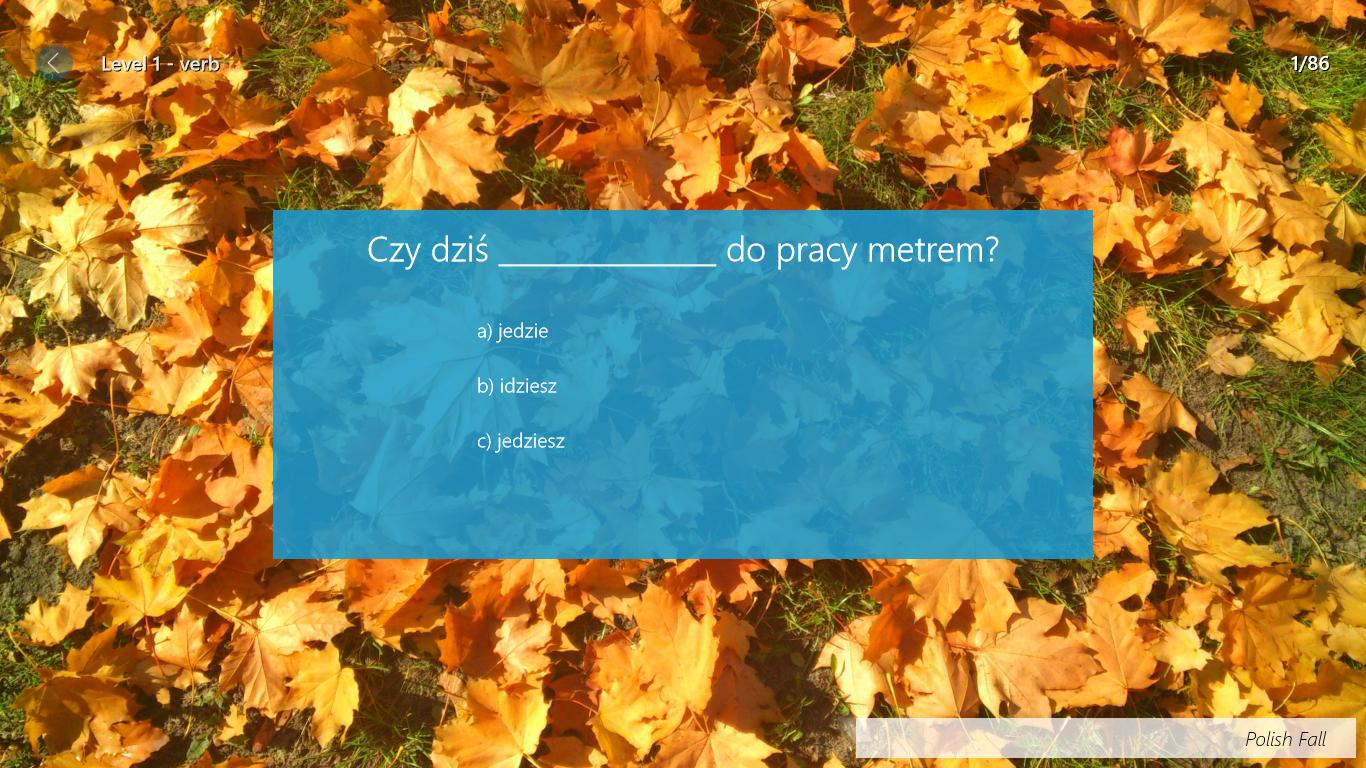 Polish for Foreigners- screenshot
