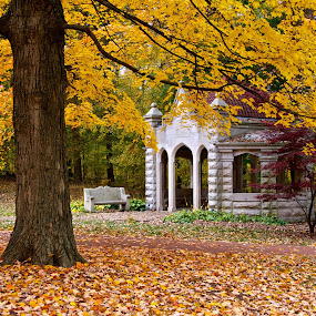 The Well House by Hugh Hazelrigg - City,  Street & Park  City Parks ( building, nature, colors, fall, trees, campus, color, colorful,  )