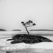 Photo: 019 Skekarsbo
