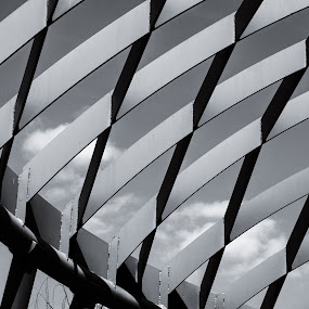 Clouds through the Grid by Debbie Jones - Buildings & Architecture Architectural Detail ( sky, black and white, bw, dallasarboretum )