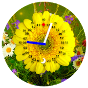 Gold clock live wallpaper pro 1 05 apk | Free FREE Gold