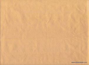 Photo: Madras 06 - Topaz Plain #1