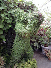 Photo: A bear made out of bush.