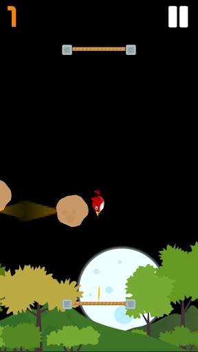 Angry Bouncing Bird