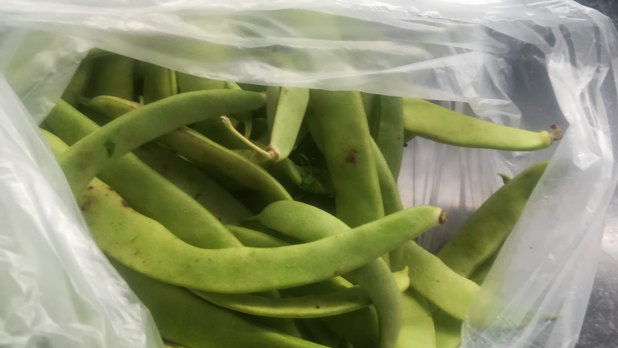 Broad beans are always available.