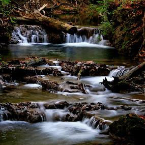 by Karen Harrison - Landscapes Waterscapes (  )