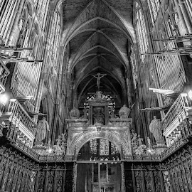 catedral de León by -. Phooneenix .- - Buildings & Architecture Places of Worship ( león, catedral )