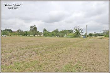 terrain à Ecollemont (51)