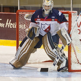 Félix by Yves Sansoucy - Sports & Fitness Ice hockey ( hockey, ice, players, game, net, goal )
