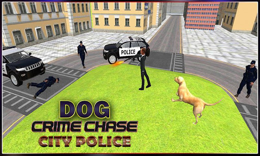 Dog-crime chase City Police