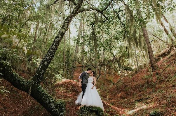 Fotógrafo de bodas Vidal Carmona (VidalCarmona). Foto del 25.09.2017