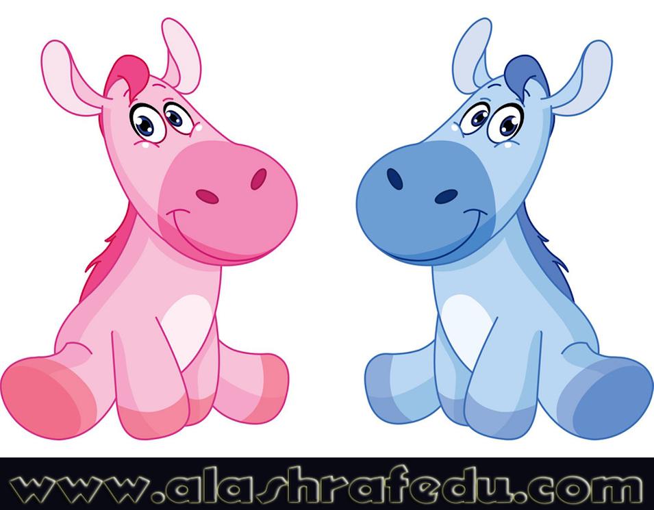 Baby Horses huoqdJEOTa_TDLFX_NuN