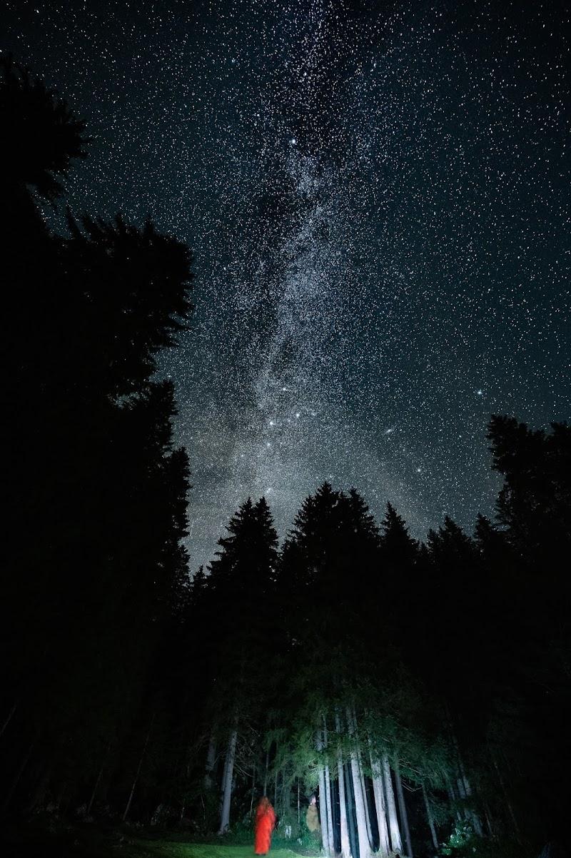 Uscimmo a riveder le stelle di Elio_R