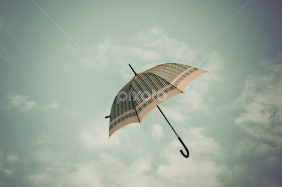 flying by Adrian  Limani - Artistic Objects Other Objects