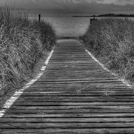 path to the beach by Fraya Replinger - City,  Street & Park  City Parks (  )