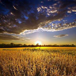 A Brillaiant Sunset Pixoto.jpg