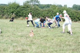 Photo: DogBasics Fun Day 2013 - playing Human Retrieve. I looove this photo! So full of energy and movement. Nicely shot Niamh!