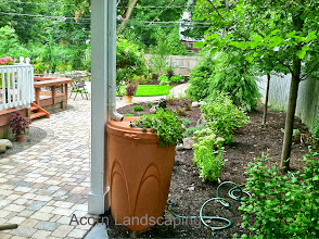 Photo: Acorn Ponds & Waterfalls, Certified Aquascape Contractor of Rochester NY since 2004. Installs Aquascape Rain Barrel to re-use stored Rain Water in the Gardens and help with Drainage issues for this Penfield NY Home.  To learn more about #LandscapeIdeas please click here: www.acornponds.com/contact-us.html  Interested in a Waterfalls without the pond? Please click here: www.acornponds.com/pondless-waterfalls.html  Sign up for your personal design consultation here: www.acornponds.com/contact-us.html  For More info about Geoff and Karen's amazing project please visit www.facebook.com/notes/acorn-landscaping-landscape-designlightingbackyard-water-gardens/landscape-design-installation-walkway-patio-rock-fountain-waterfall-in-penfield-/238744206162709  Check out our photo albums on Pinterest here: www.pinterest.com/acornlandscape/  Click here for a free Magazine all about Ponds and Water Features: http://flip.it/gsrNN  Acorn Ponds & Waterfalls  585.442.6373 www.acornponds.com