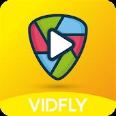 VidFly Mod
