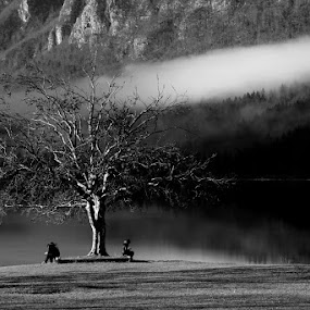 Everyone on his own by Donat Piber - Black & White Landscapes ( tree, frog, lake )