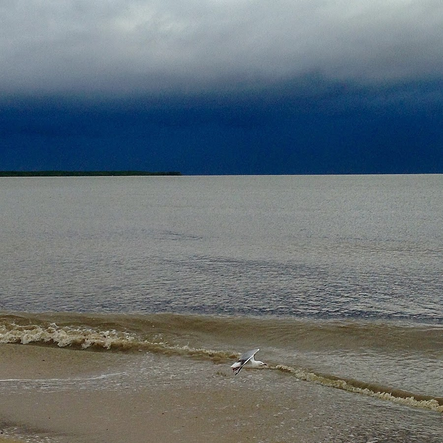 Calm before the storm by Jane Sherwin - Instagram & Mobile iPhone