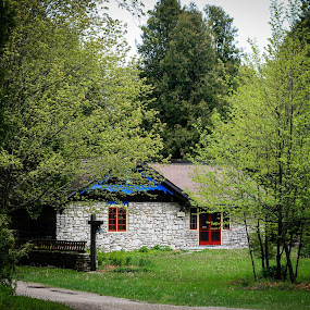 Scandinavian house in the middle of the woods by Maria Sicilian - Buildings & Architecture Public & Historical ( scandinavian house, cozy, snugg, norwegian, hiding, green, forest, house, cute, woods, scandinavian )