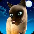 Meow! Cute Kitty Cat ? Puppy Love Pet Simulator
