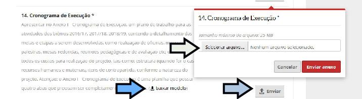 p anexo.jpg