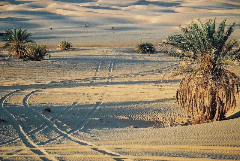 Verso le dune di paolo-spagg