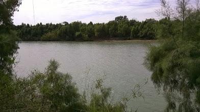 Photo: Rio Grande from Paso del Indio 4