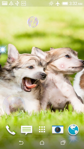 玩免費休閒APP|下載小狗拼图+ LWP app不用錢|硬是要APP