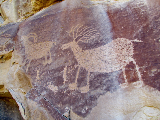 Bighorn and nice deer petroglyphs