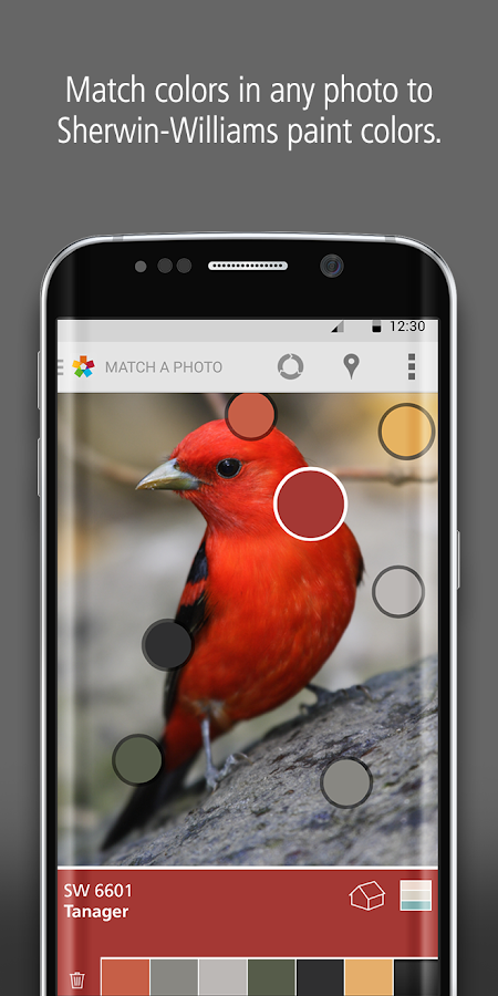 ColorSnap® Visualizer- screenshot