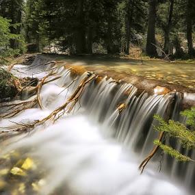 Runoff by Lisa Kidd - Landscapes Waterscapes ( water, idaho, waterfalls, smooth, creek )