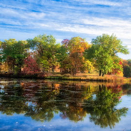 Fall in Kensington by Greg Croasdill - Landscapes Waterscapes ( michigan, fall colors, midwest, fall, wildlife, kensington, metro parks )