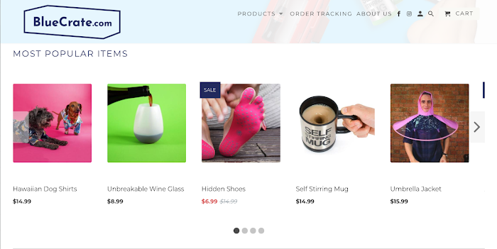 An example of an ecommerce store that dropships items.