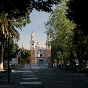 Puebla Downtown by Cristobal Garciaferro Rubio - Buildings & Architecture Places of Worship ( church, park, mexico, puebla, trees, downtown )