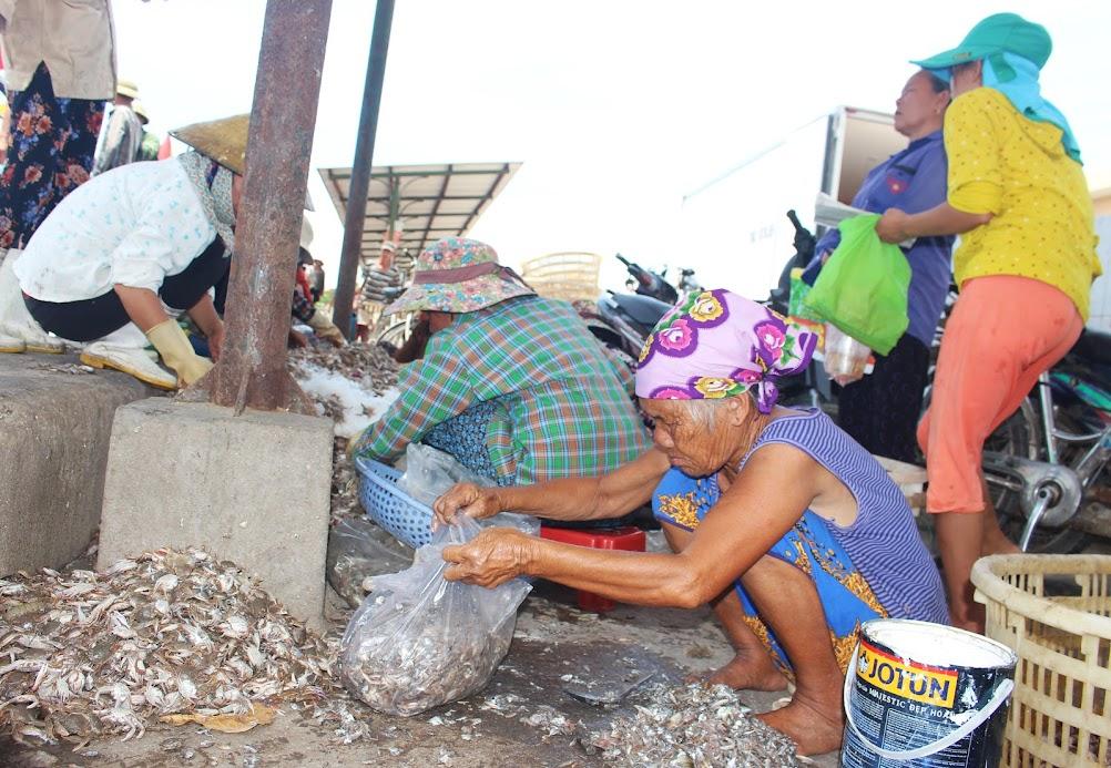 """""""Già hóa"""" lao động là khó khăn chung của các xã vùng biển"""