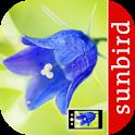 Blumen Id Automatik + Fotoerkennung für Wildblumen icon