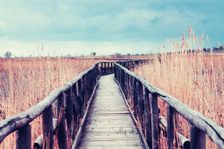 Le chemin du destin. di SarahL