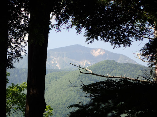 樹間から硫黄岳