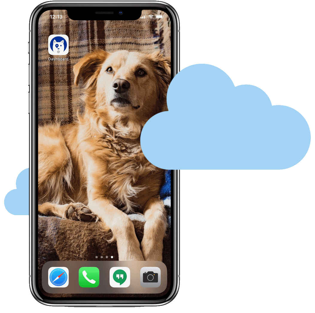 a mobile iPhone with an easily accessible pet care software web app on the home screen.
