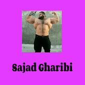 Tải Game Sajad Gharibi Iran