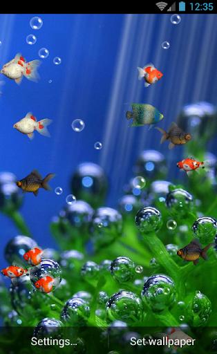 Aquarium Live Wallpaper Free  screenshots 4
