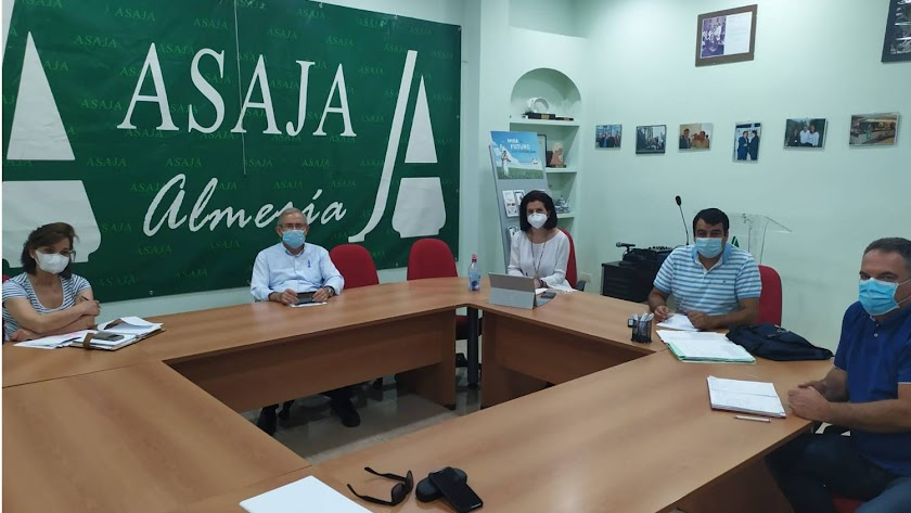 Reunión de organizaciones agrarias almerienses para analizar la actualidad del agro.