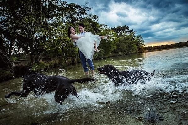 Wedding photographer Damon Pijlman (studiodamon). Photo of 24.08.2017