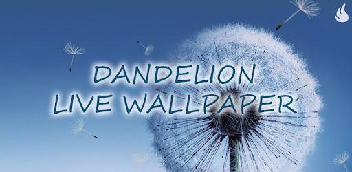 Dandelion Live Wallpaper Apps On Google Play