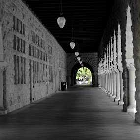 Stanford University by Maithili Saoji - Buildings & Architecture Other Exteriors