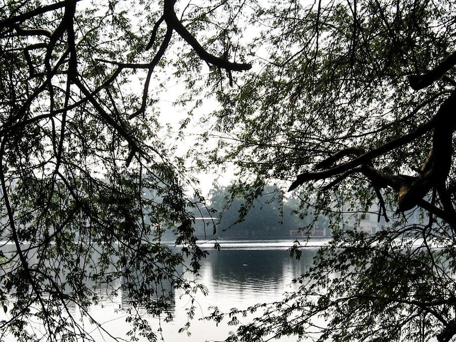 Santragaghi lake by Hrijul Dey - Nature Up Close Water ( reflection, sunset, trees, lake howrah birdless, landscape )