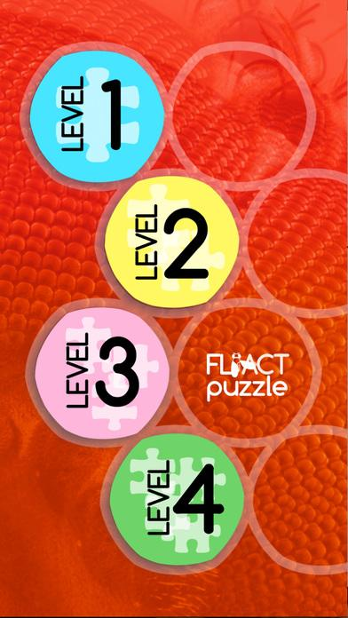 CRG FliAct Puzzle- screenshot